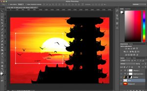 photo editing software usually offers thirty days free trial